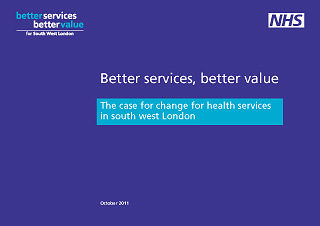 nhs bsbv report